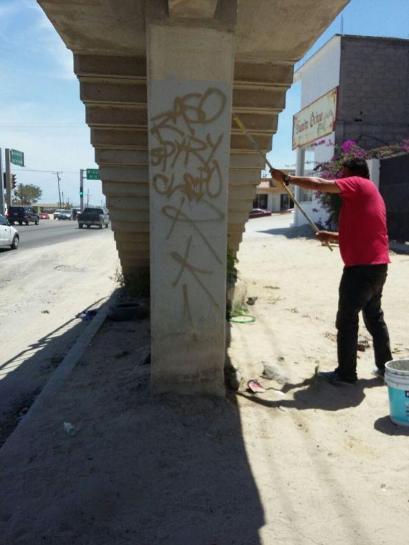Reporta imagen urbana mil 300 m2 de bardas libres de grafitti2